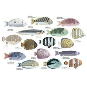 Pesci - Save the ocean -