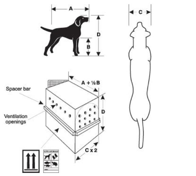 Dimensioni della gabbia per trasporti aerei animali domestici